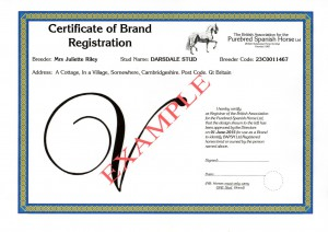 BRAND CERTIFICATE - Example smfl