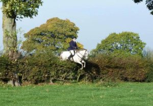 Soleada and Amy mid-air over huge hedge. Photo Alan Downs